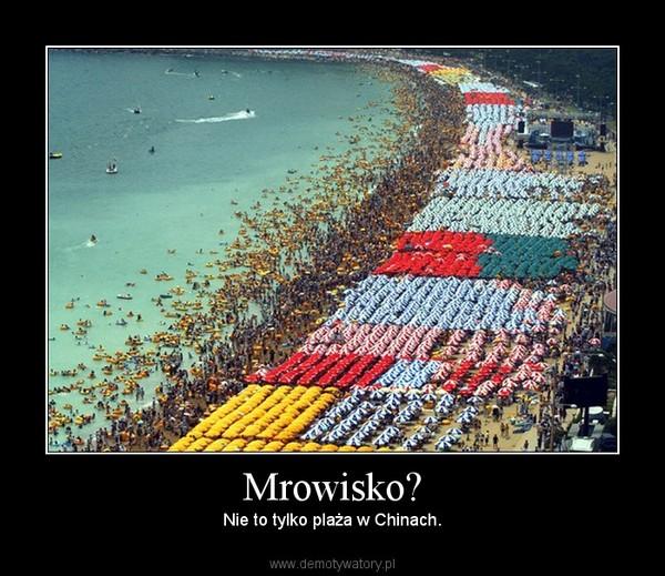 Mrowisko? – Nie to tylko plaża w Chinach.