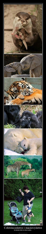 Człowieczeństwo i macierzyństwo – nie zawsze idzie ze sobą w parze...