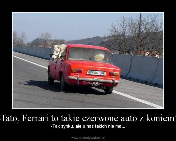 Tato Ferrari To Takie Czerwone Auto Z Koniem Demotywatory Pl
