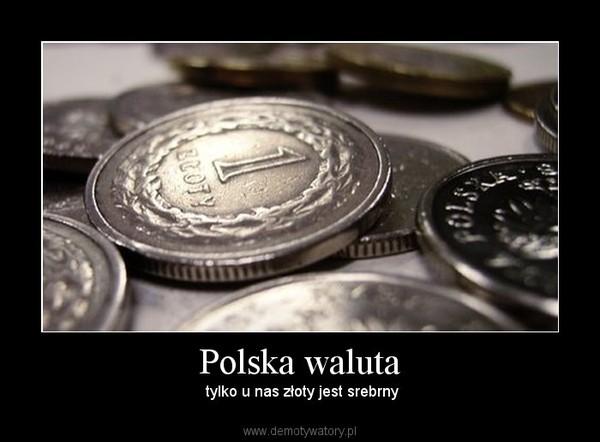 Polska waluta –  tylko u nas złoty jest srebrny