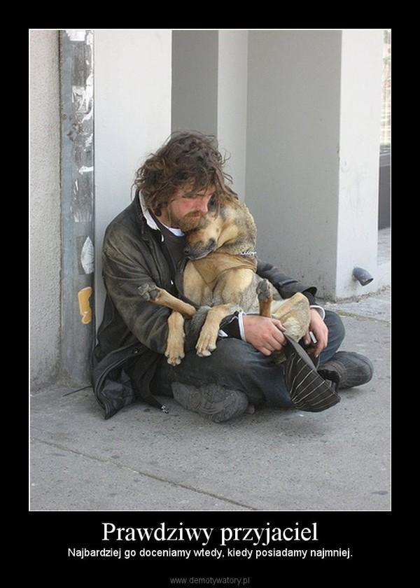 Prawdziwy przyjaciel – Najbardziej go doceniamy wtedy, kiedy posiadamy najmniej.