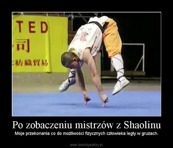 Po zobaczeniu mistrzów z Shaolinu – Moje przekonania co do możliwości fizycznych człowieka legły w gruzach.