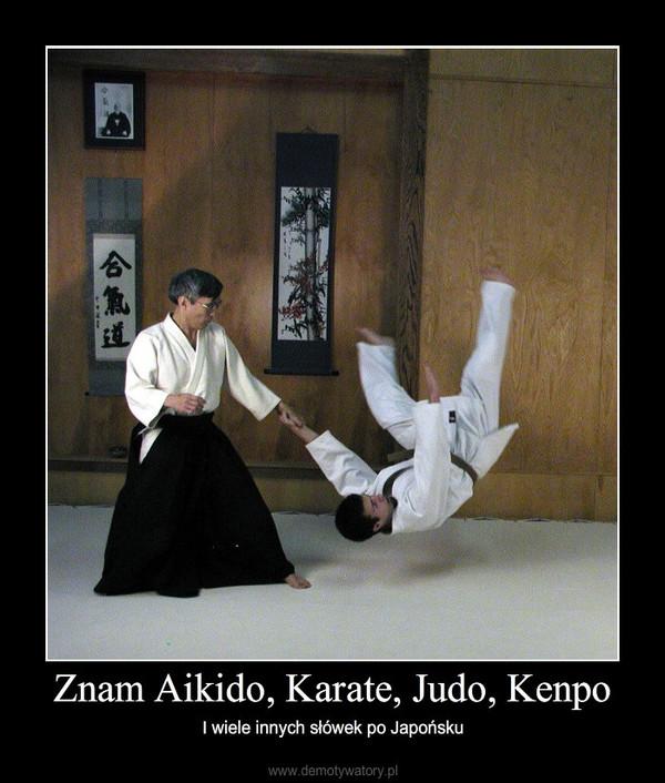 Znam Aikido, Karate, Judo, Kenpo – I wiele innych słówek po Japońsku