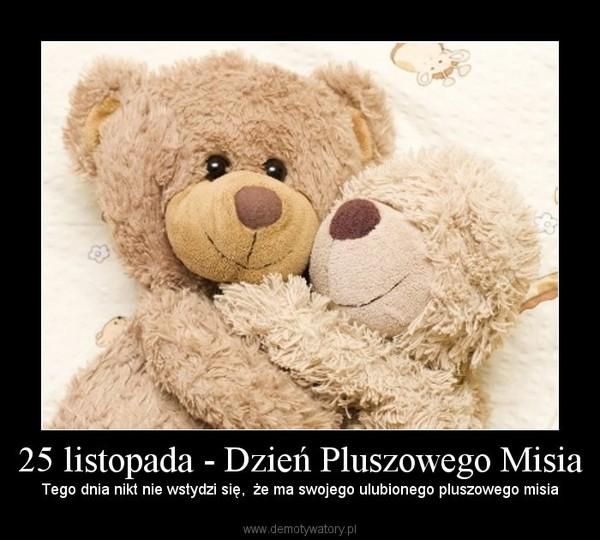 25 listopada - Dzień Pluszowego Misia – Demotywatory.pl