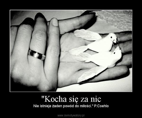 """""""Kocha się za nic – Nie istnieje żaden powód do miłości."""" P.Coehlo"""
