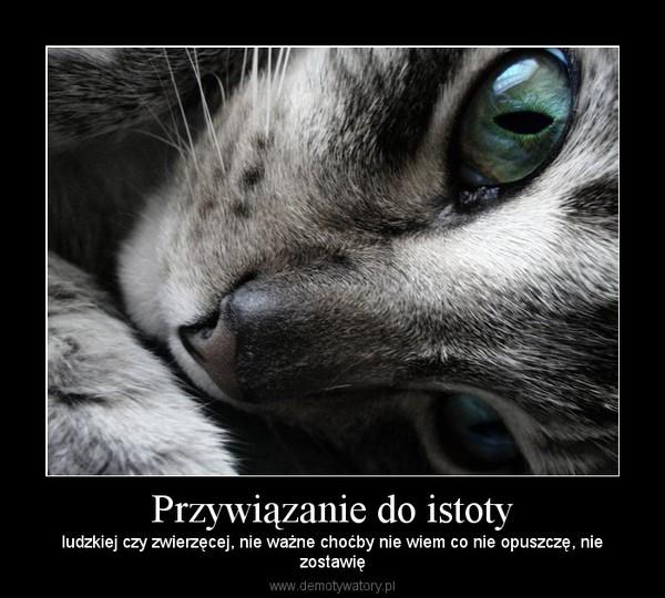 Przywiązanie do istoty – ludzkiej czy zwierzęcej, nie ważne choćby nie wiem co nie opuszczę, niezostawię