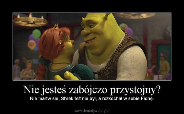 Nie jesteś zabójczo przystojny? – Nie martw się, Shrek też nie był, a rozkochał w sobie Fionę.