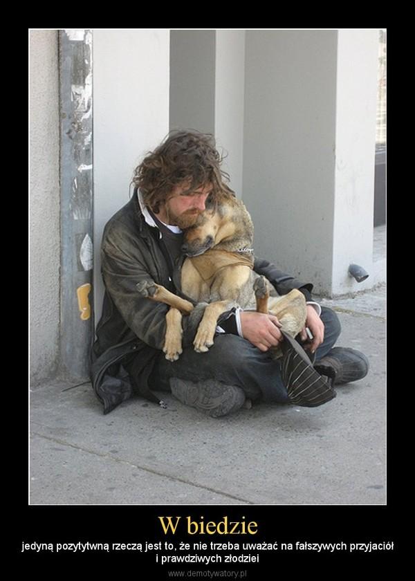W biedzie – jedyną pozytytwną rzeczą jest to, że nie trzeba uważać na fałszywych przyjaciółi prawdziwych złodziei