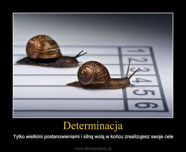 Determinacja – Tylko wielkimi postanowieniami i silną wolą w końcu zrealizujesz swoje cele