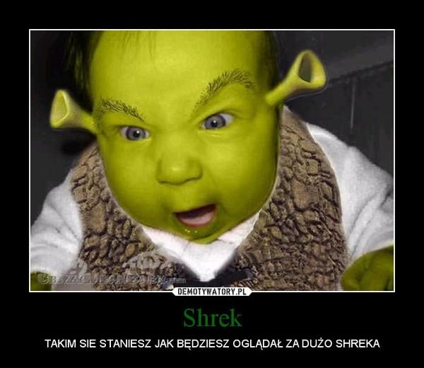 Shrek – TAKIM SIE STANIESZ JAK BĘDZIESZ OGLĄDAŁ ZA DUŻO SHREKA