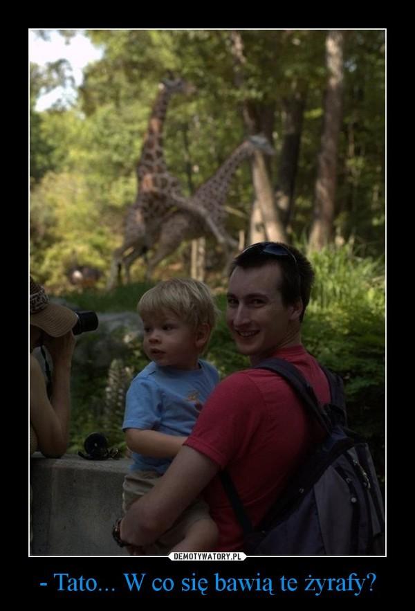 - Tato... W co się bawią te żyrafy? –