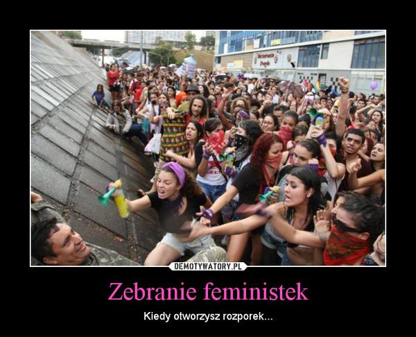 Zebranie feministek – Kiedy otworzysz rozporek...