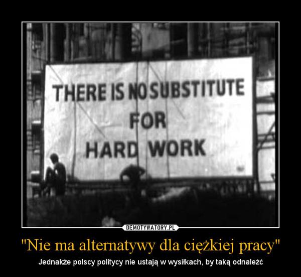 """""""Nie ma alternatywy dla ciężkiej pracy"""" – Jednakże polscy politycy nie ustają w wysiłkach, by taką odnaleźć"""
