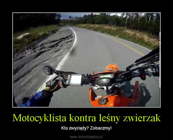 Motocyklista kontra leśny zwierzak – Kto zwycięży? Zobaczmy!