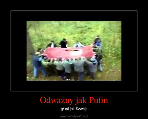 Odważny jak Putin – głupi jak Szwejk