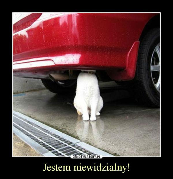 Jestem niewidzialny! –