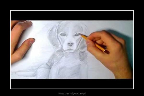 Jak narysować psa –