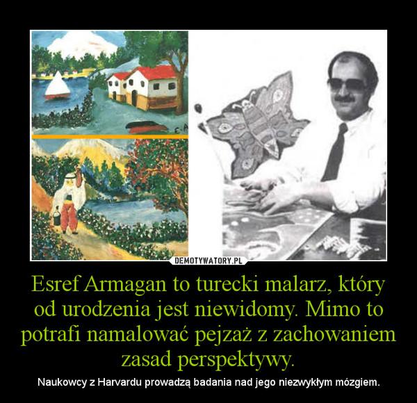 Esref Armagan to turecki malarz, który od urodzenia jest niewidomy. Mimo to potrafi namalować pejzaż z zachowaniem zasad perspektywy. – Naukowcy z Harvardu prowadzą badania nad jego niezwykłym mózgiem.