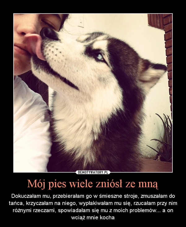 Mój pies wiele zniósł ze mną – Dokuczałam mu, przebierałam go w śmieszne stroje, zmuszałam do tańca, krzyczałam na niego, wypłakiwałam mu się, rzucałam przy nim różnymi rzeczami, spowiadałam się mu z moich problemów... a on wciąż mnie kocha