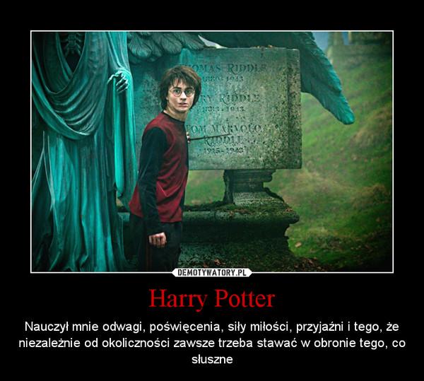 Harry Potter – Nauczył mnie odwagi, poświęcenia, siły miłości, przyjaźni i tego, że niezależnie od okoliczności zawsze trzeba stawać w obronie tego, co słuszne