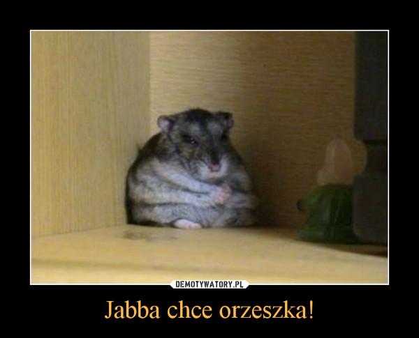 Jabba chce orzeszka! –