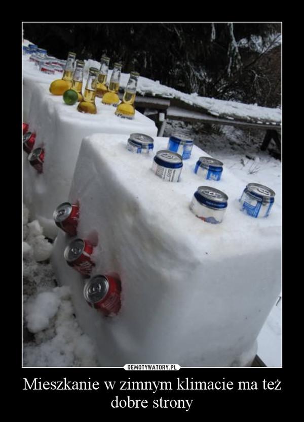 Mieszkanie w zimnym klimacie ma też dobre strony –