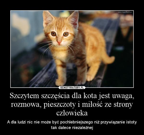 Szczytem szczęścia dla kota jest uwaga, rozmowa, pieszczoty i miłość ze strony człowieka – A dla ludzi nic nie może być pochlebniejszego niż przywiązanie istoty tak dalece niezależnej