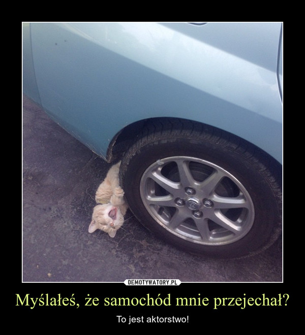 Myślałeś, że samochód mnie przejechał? – To jest aktorstwo!