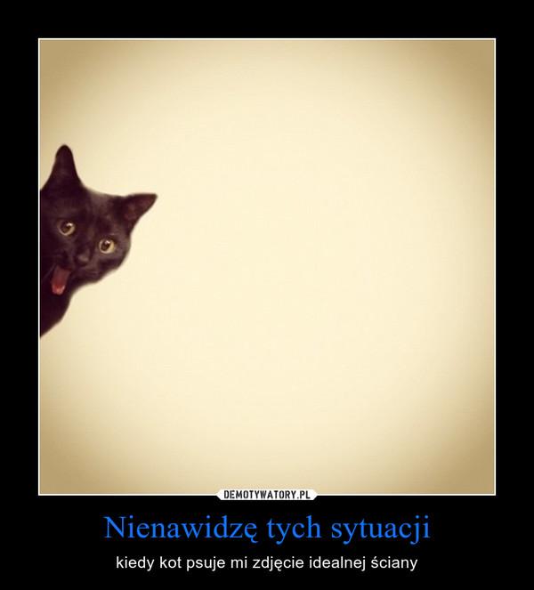 Nienawidzę tych sytuacji – kiedy kot psuje mi zdjęcie idealnej ściany