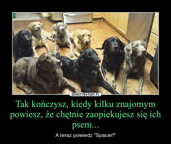 """Tak kończysz, kiedy kilku znajomym powiesz, że chętnie zaopiekujesz się ich psem... – A teraz powiedz """"Spacer!"""""""