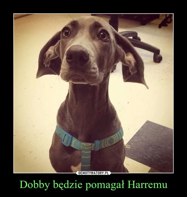 Dobby będzie pomagał Harremu –