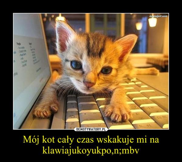 Mój kot cały czas wskakuje mi na klawiajukoyukpo,n;mbv –