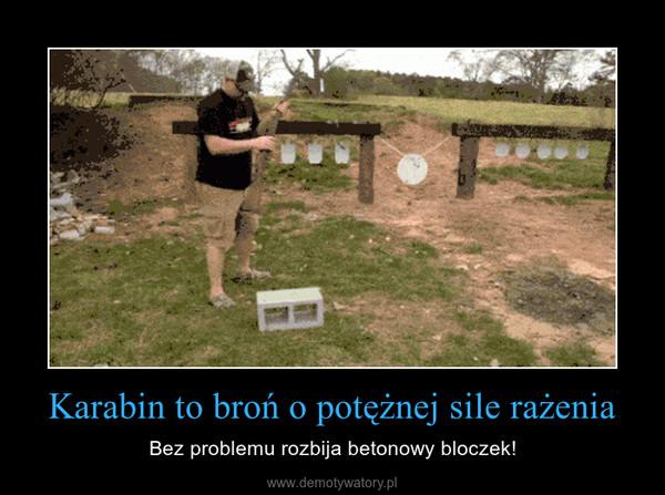 Karabin to broń o potężnej sile rażenia – Bez problemu rozbija betonowy bloczek!