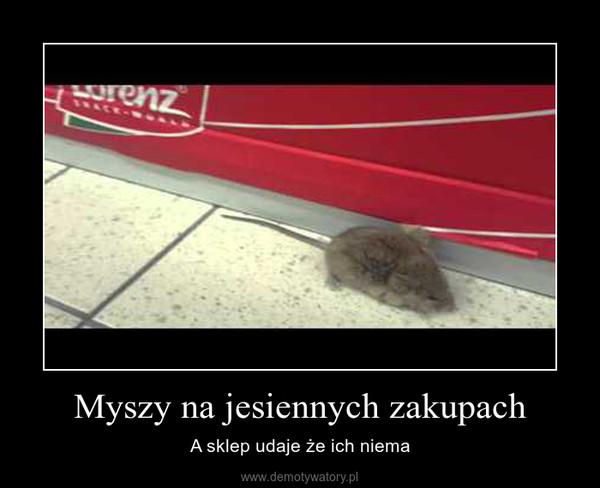 Myszy na jesiennych zakupach – A sklep udaje że ich niema