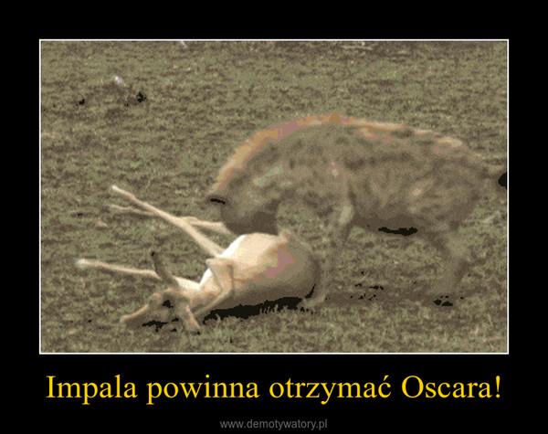 Impala powinna otrzymać Oscara! –