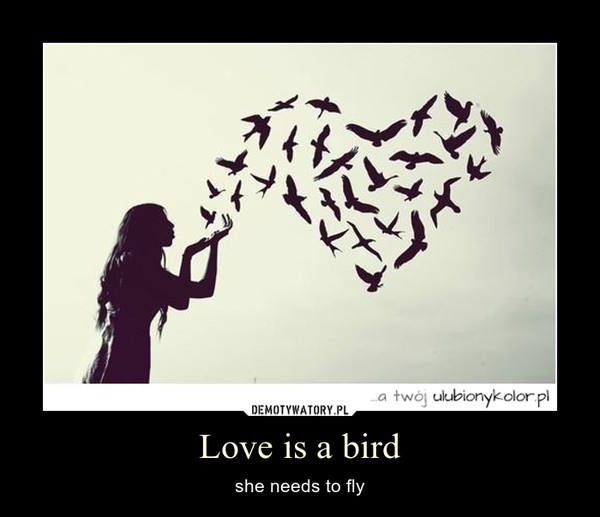 Love is a bird – she needs to fly