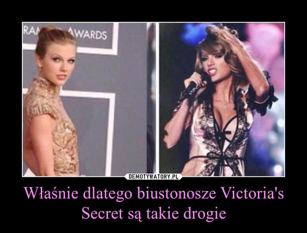 Właśnie dlatego biustonosze Victoria's Secret są takie drogie –