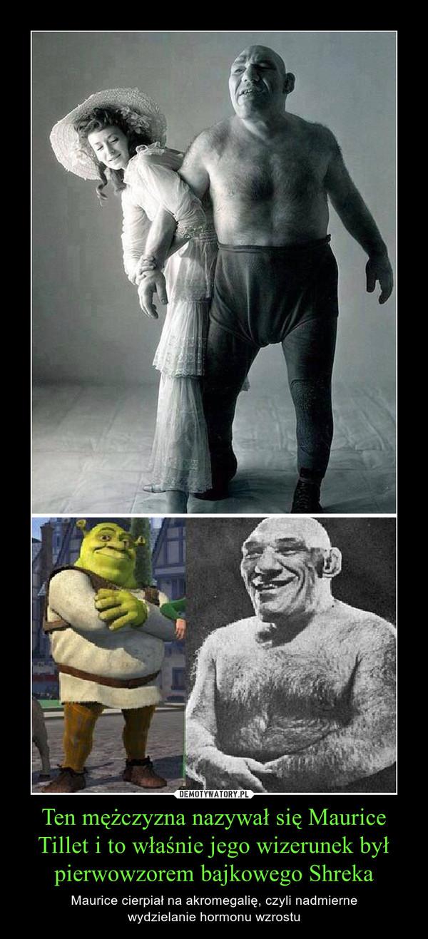 Ten mężczyzna nazywał się Maurice Tillet i to właśnie jego wizerunek był pierwowzorem bajkowego Shreka – Maurice cierpiał na akromegalię, czyli nadmiernewydzielanie hormonu wzrostu