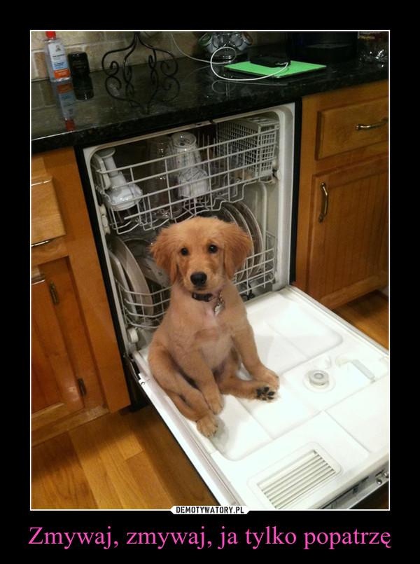 Zmywaj, zmywaj, ja tylko popatrzę –