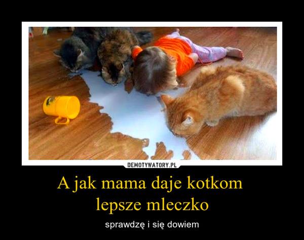 A jak mama daje kotkom lepsze mleczko – sprawdzę i się dowiem