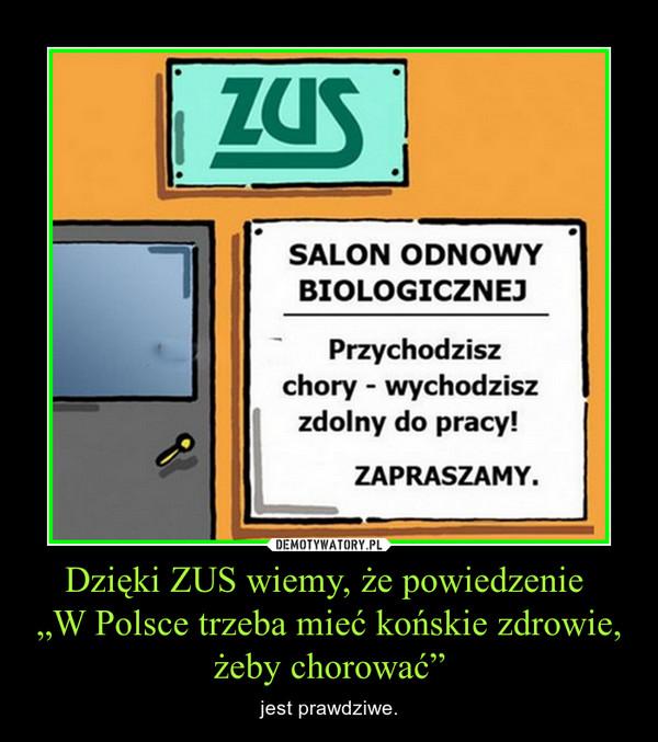 """Dzięki ZUS wiemy, że powiedzenie """"W Polsce trzeba mieć końskie zdrowie, żeby chorować"""" – jest prawdziwe."""