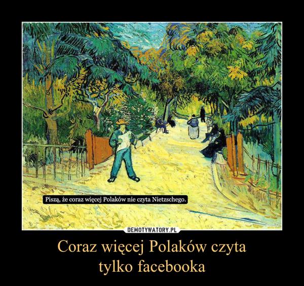 Coraz więcej Polaków czytatylko facebooka –