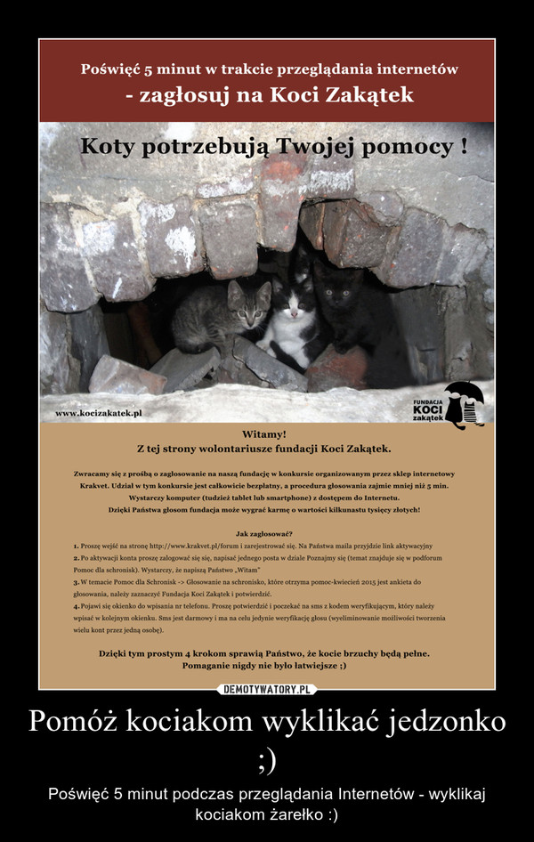 Pomóż kociakom wyklikać jedzonko ;) – Poświęć 5 minut podczas przeglądania Internetów - wyklikaj kociakom żarełko :)