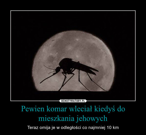 Pewien komar wleciał kiedyś do mieszkania jehowych – Teraz omija je w odległości co najmniej 10 km