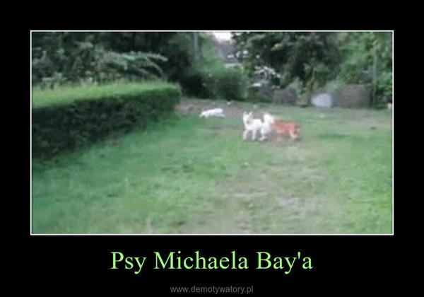 Psy Michaela Bay'a –