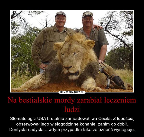 Na bestialskie mordy zarabiał leczeniem ludzi – Stomatolog z USA brutalnie zamordował lwa Cecila. Z lubością obserwował jego wielogodzinne konanie, zanim go dobił. Dentysta-sadysta... w tym przypadku taka zależność występuje.