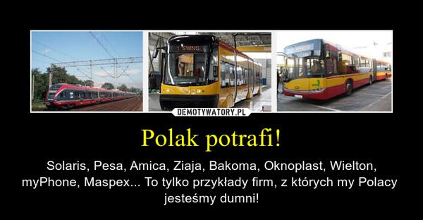 Polak potrafi! – Solaris, Pesa, Amica, Ziaja, Bakoma, Oknoplast, Wielton, myPhone, Maspex... To tylko przykłady firm, z których my Polacy  jesteśmy dumni!