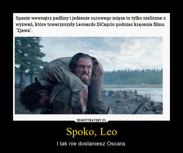 Spoko, Leo – I tak nie dostaniesz Oscara.