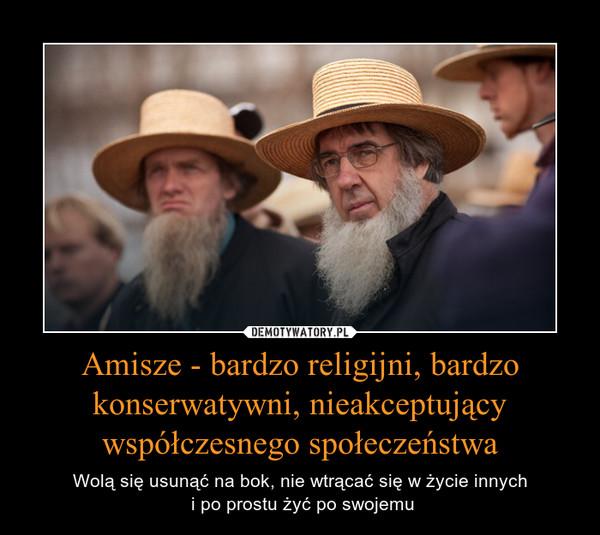 Amisze - bardzo religijni, bardzo konserwatywni, nieakceptujący współczesnego społeczeństwa – Wolą się usunąć na bok, nie wtrącać się w życie innych i po prostu żyć po swojemu