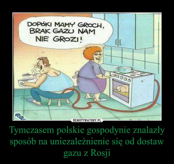 Tymczasem polskie gospodynie znalazły sposób na uniezależnienie się od dostaw gazu z Rosji –